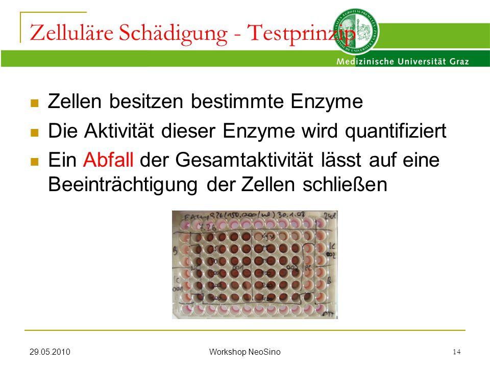 29.05.2010 Workshop NeoSino 14 Zellen besitzen bestimmte Enzyme Die Aktivität dieser Enzyme wird quantifiziert Ein Abfall der Gesamtaktivität lässt au