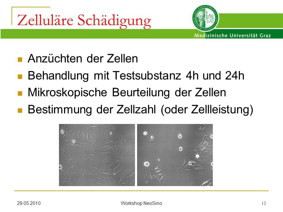 29.05.2010 Workshop NeoSino 15 Anzüchten der Zellen Behandlung mit Testsubstanz 4h und 24h Mikroskopische Beurteilung der Zellen Bestimmung der Zellza