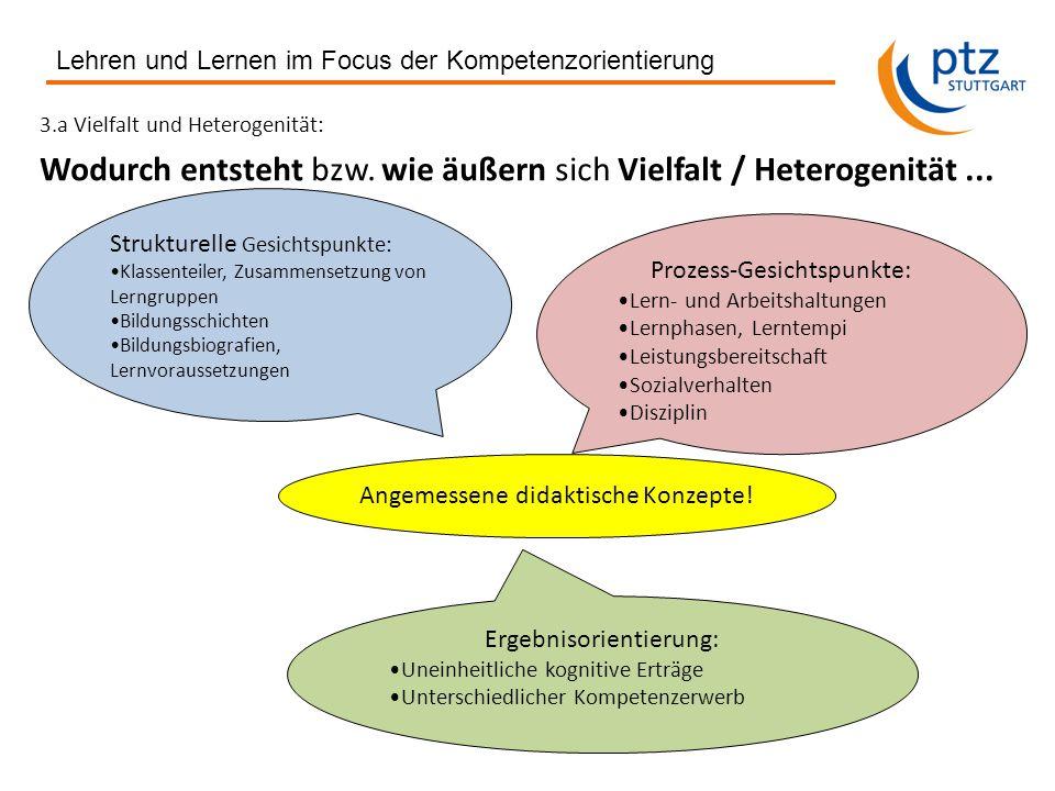 3.a Vielfalt und Heterogenität: Wodurch entsteht bzw.