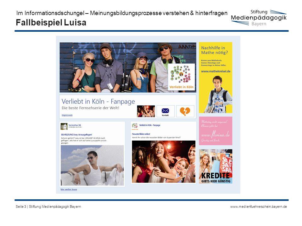 www.medienfuehrerschein.bayern.deSeite 3 | Stiftung Medienpädagogik Bayern Fallbeispiel Luisa Im Informationsdschungel – Meinungsbildungsprozesse verstehen & hinterfragen