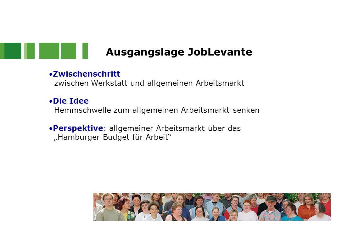 Zwischenschritt zwischen Werkstatt und allgemeinen Arbeitsmarkt Die Idee Hemmschwelle zum allgemeinen Arbeitsmarkt senken Perspektive: allgemeiner Arb