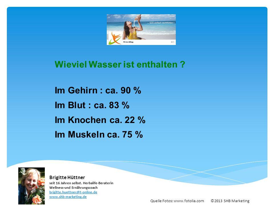 Wieviel Wasser ist enthalten ? Im Gehirn : ca. 90 % Im Blut : ca. 83 % Im Knochen ca. 22 % Im Muskeln ca. 75 % Quelle Fotos: www.fotolia.com ©2013 SHB
