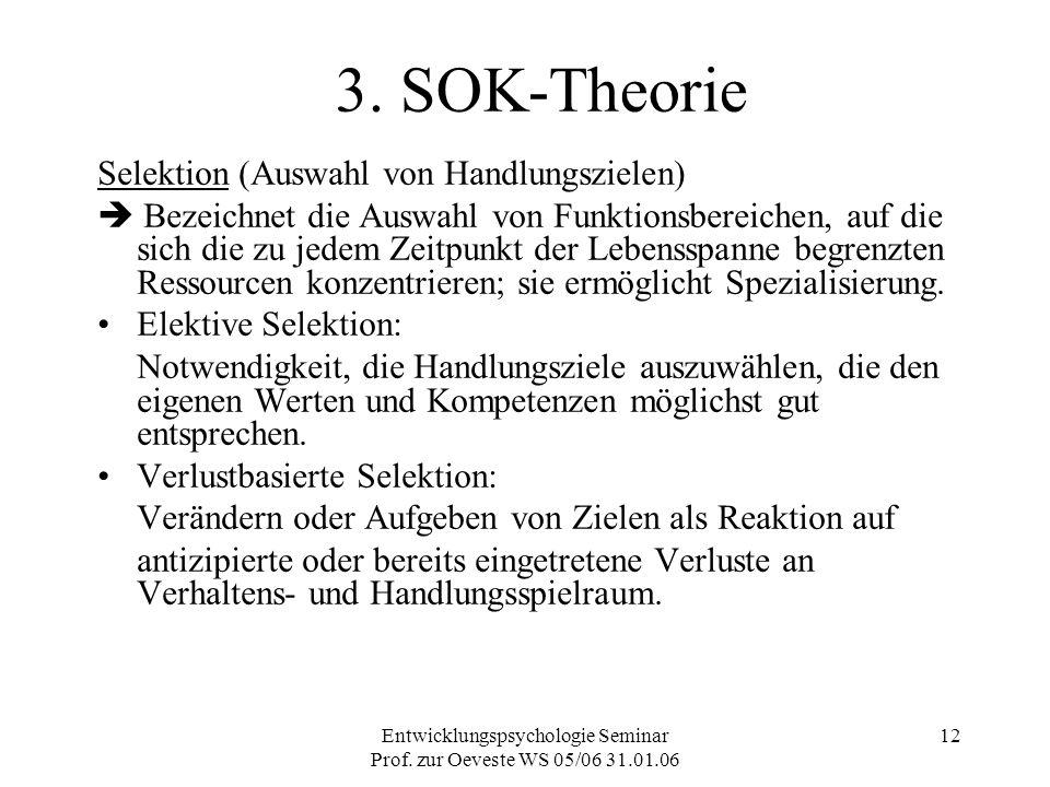 Entwicklungspsychologie Seminar Prof. zur Oeveste WS 05/06 31.01.06 12 3. SOK-Theorie Selektion (Auswahl von Handlungszielen)  Bezeichnet die Auswahl
