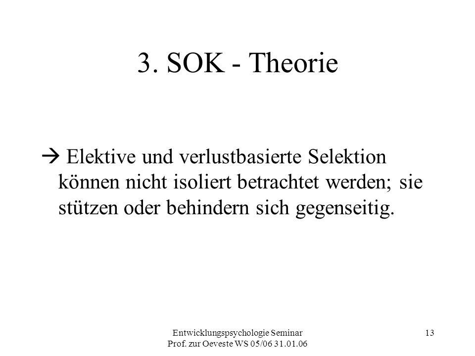 Entwicklungspsychologie Seminar Prof. zur Oeveste WS 05/06 31.01.06 13 3. SOK - Theorie  Elektive und verlustbasierte Selektion können nicht isoliert