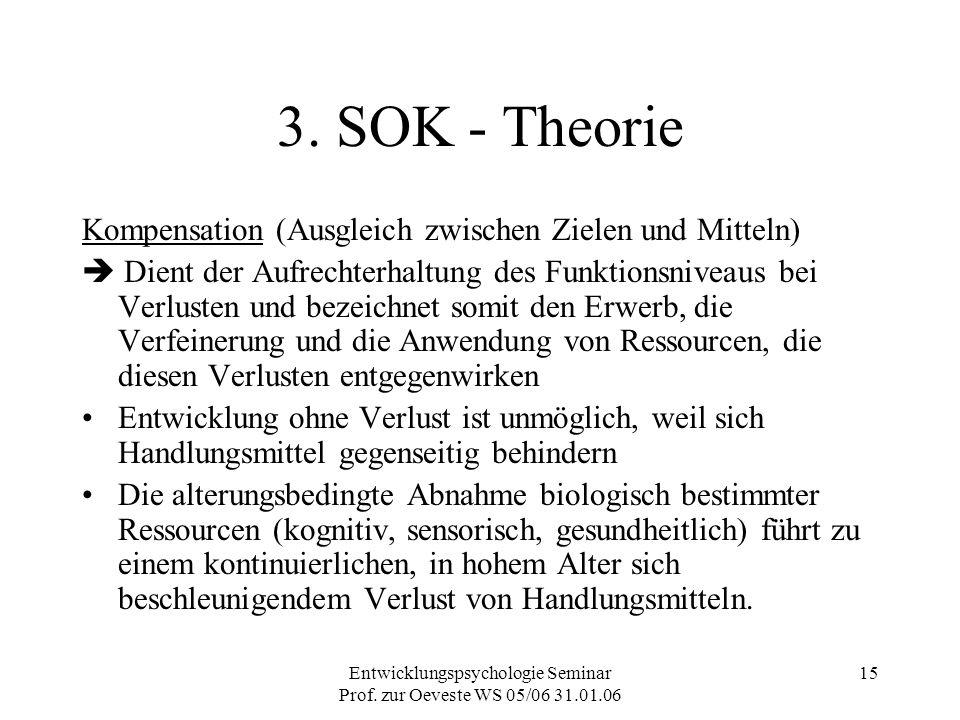 Entwicklungspsychologie Seminar Prof. zur Oeveste WS 05/06 31.01.06 15 3. SOK - Theorie Kompensation (Ausgleich zwischen Zielen und Mitteln)  Dient d