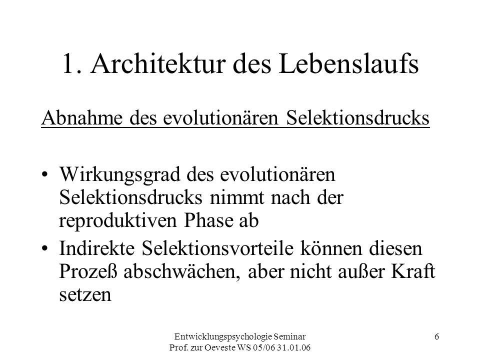 Entwicklungspsychologie Seminar Prof. zur Oeveste WS 05/06 31.01.06 6 1. Architektur des Lebenslaufs Abnahme des evolutionären Selektionsdrucks Wirkun