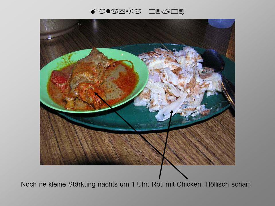 Malaysia 03/04 Noch ne kleine Stärkung nachts um 1 Uhr. Roti mit Chicken. Höllisch scharf.
