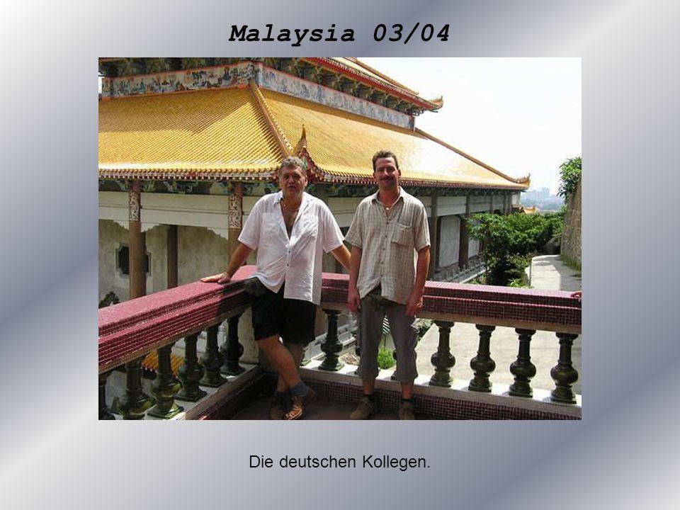 Die deutschen Kollegen.