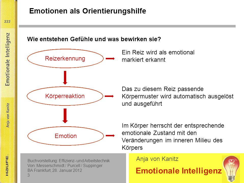 Buchvorstellung: Effizienz- und Arbeitstechnik Von: Messerschmidt / Purcell / Suppinger BA Frankfurt, 28.