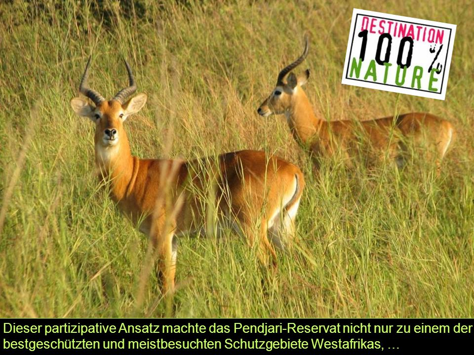 Dieser partizipative Ansatz machte das Pendjari-Reservat nicht nur zu einem der bestgeschützten und meistbesuchten Schutzgebiete Westafrikas, …