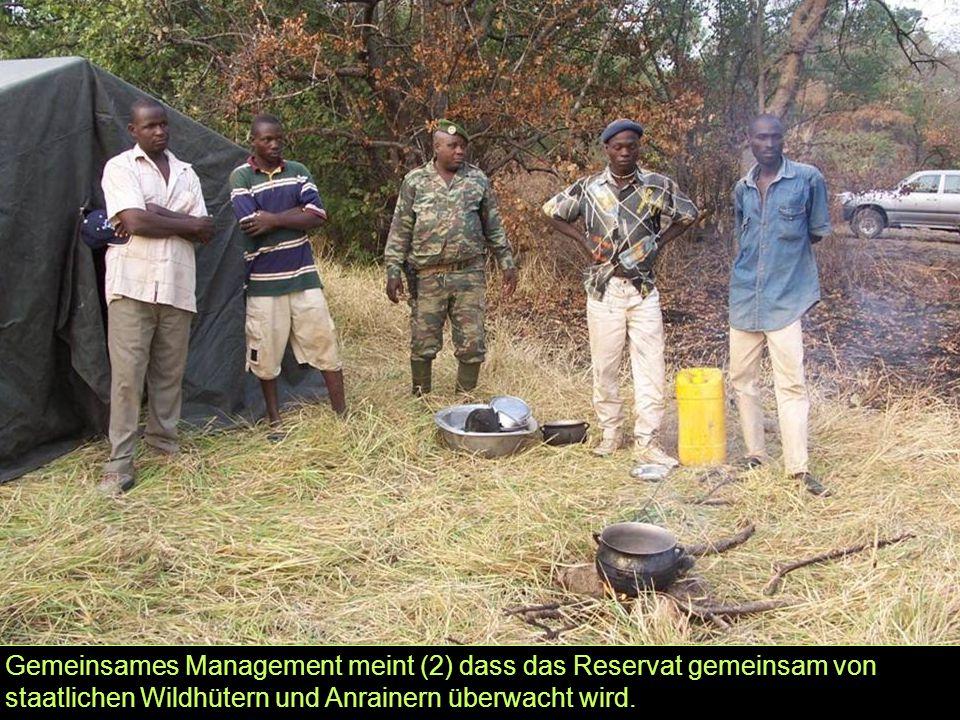 Gemeinsames Management meint (2) dass das Reservat gemeinsam von staatlichen Wildhütern und Anrainern überwacht wird.