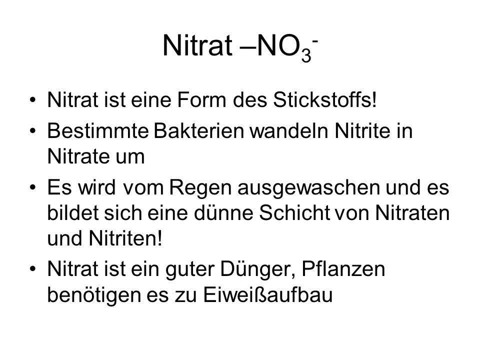 Nitrat –NO 3 - Nitrat ist eine Form des Stickstoffs! Bestimmte Bakterien wandeln Nitrite in Nitrate um Es wird vom Regen ausgewaschen und es bildet si