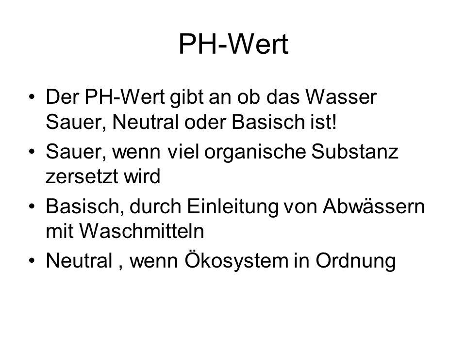 PH-Wert Der PH-Wert gibt an ob das Wasser Sauer, Neutral oder Basisch ist! Sauer, wenn viel organische Substanz zersetzt wird Basisch, durch Einleitun