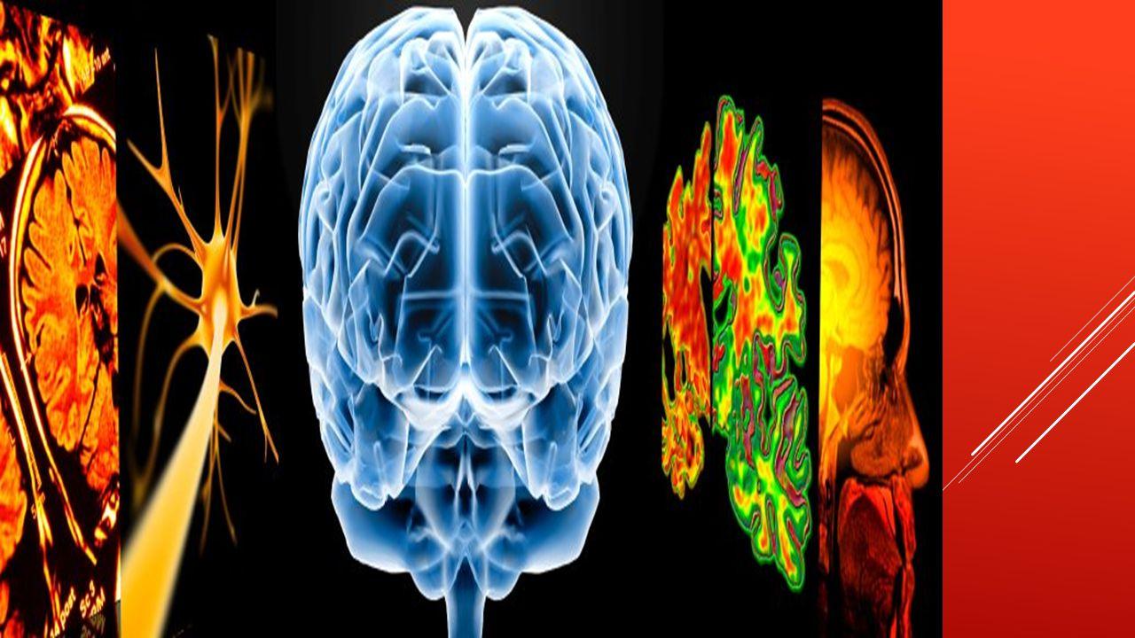 Im späteren Stadium erkennt der Demente schließlich auch Personen nicht wieder. Zusätzlich kann es zu Persönlichkeitsveränderungen kommen. Auch starke