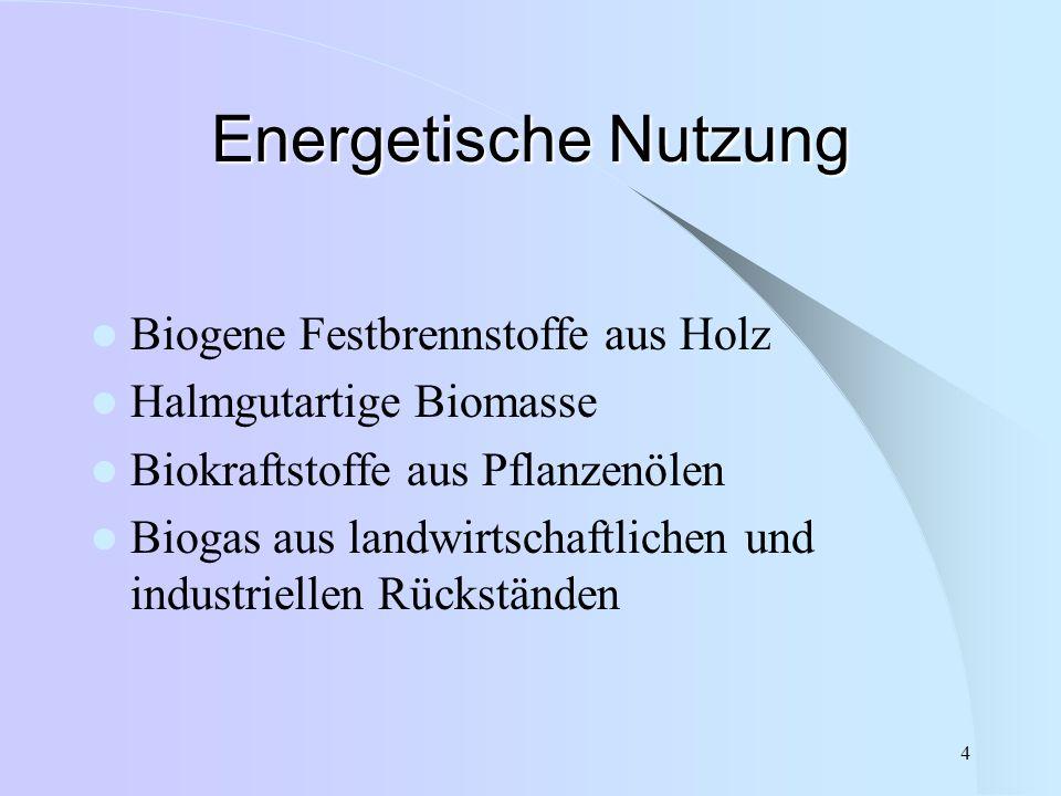 4 Energetische Nutzung Biogene Festbrennstoffe aus Holz Halmgutartige Biomasse Biokraftstoffe aus Pflanzenölen Biogas aus landwirtschaftlichen und ind