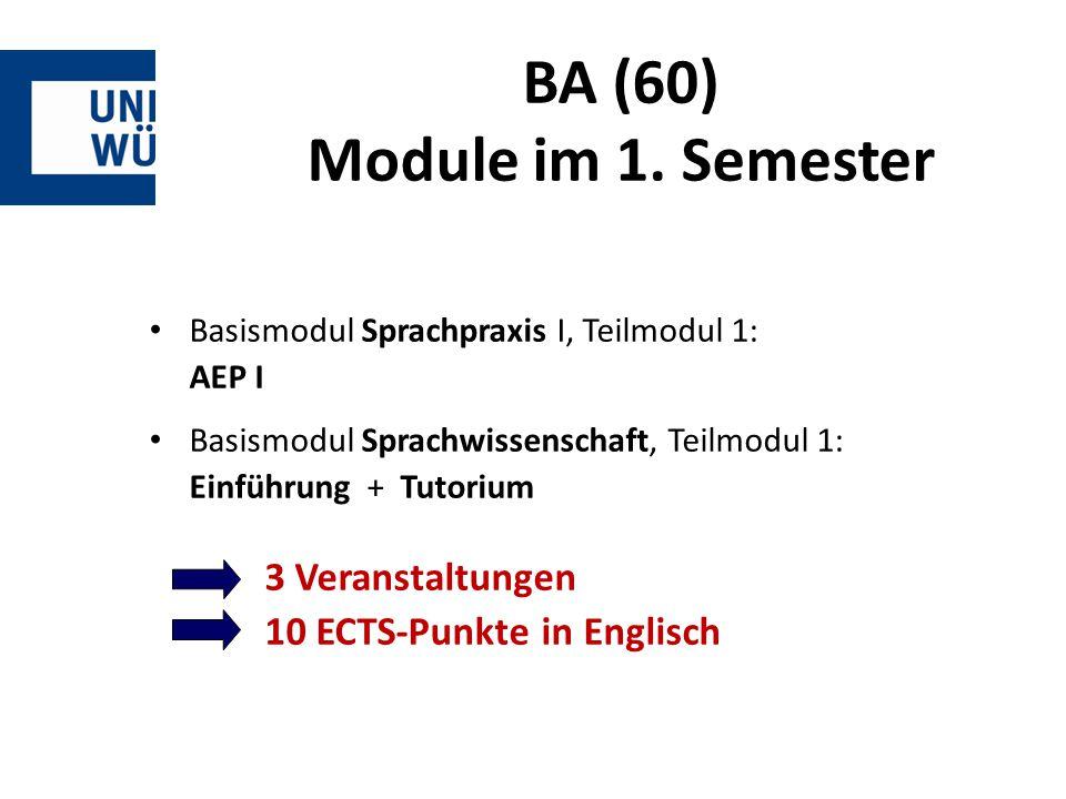 BA (60) Module im 1.