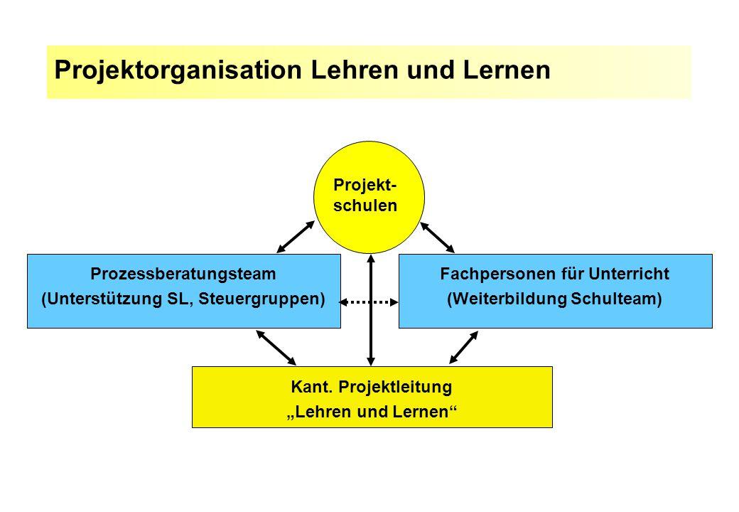 """Projektorganisation Lehren und Lernen Projekt- schulen Kant. Projektleitung """"Lehren und Lernen"""" Prozessberatungsteam (Unterstützung SL, Steuergruppen)"""