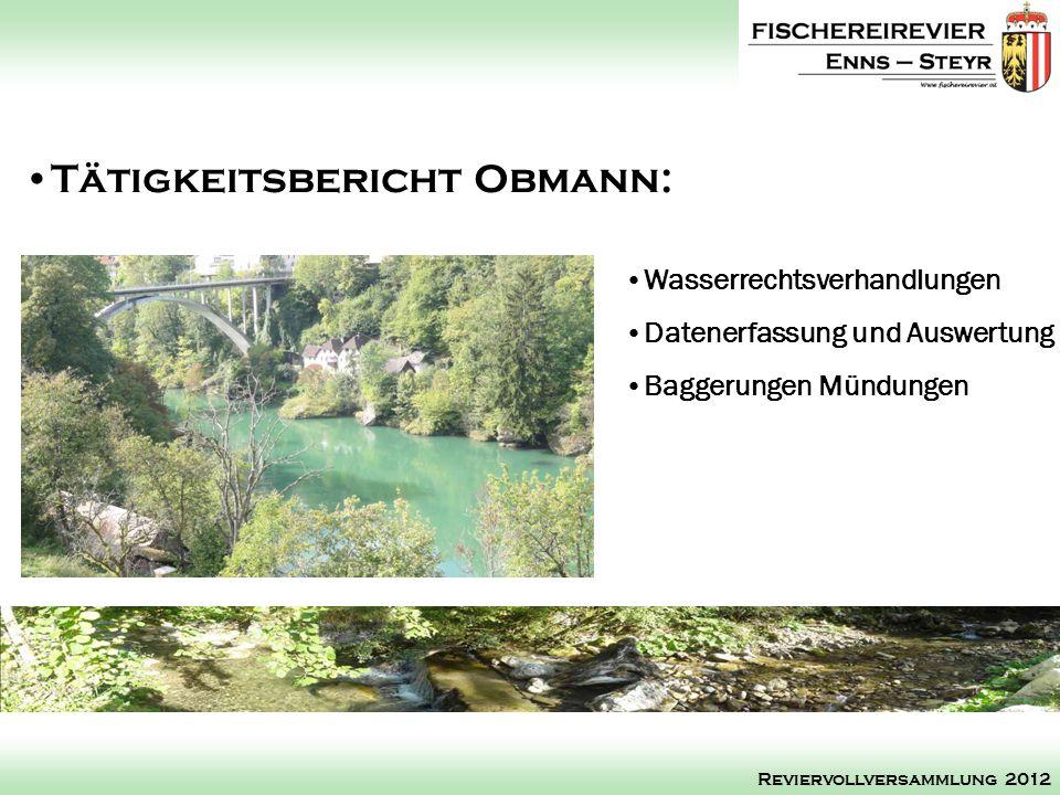 Wasserrechtsverhandlungen Datenerfassung und Auswertung Baggerungen Mündungen Tätigkeitsbericht Obmann: Reviervollversammlung 2012