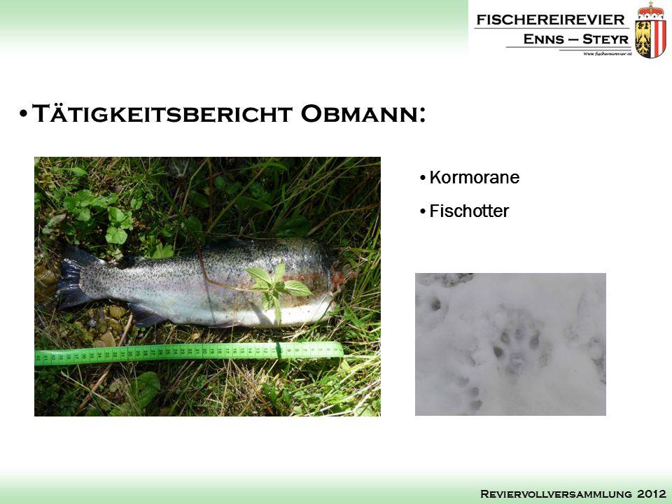 Kormorane Fischotter Tätigkeitsbericht Obmann: Reviervollversammlung 2012