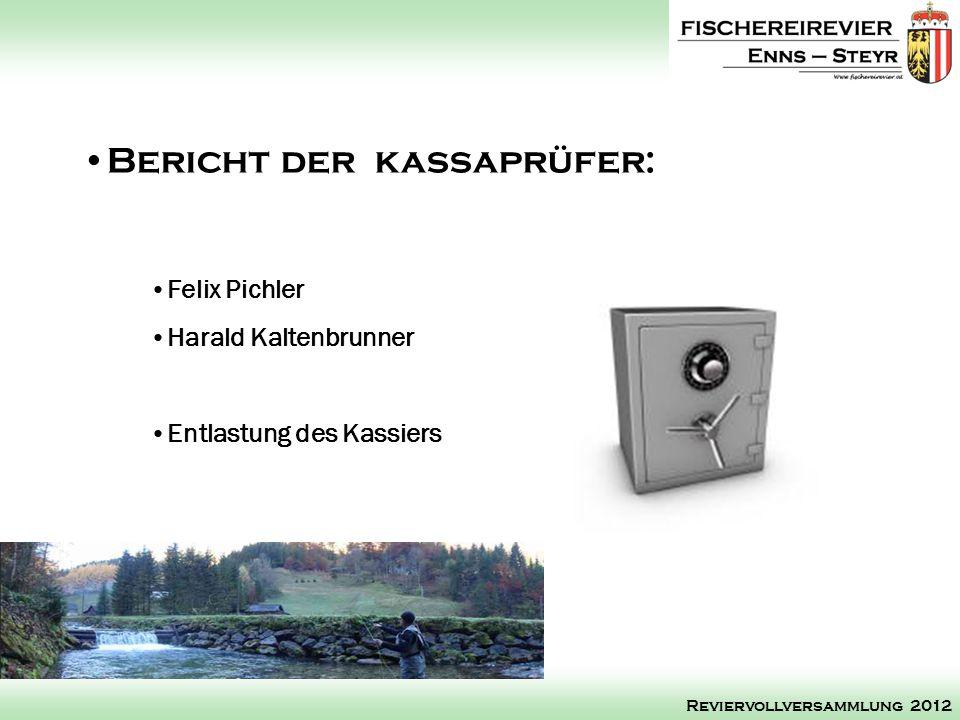 Felix Pichler Harald Kaltenbrunner Entlastung des Kassiers Bericht der kassaprüfer: Reviervollversammlung 2012