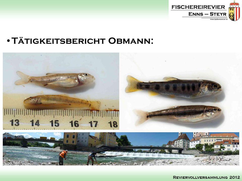Tätigkeitsbericht Obmann: Reviervollversammlung 2012