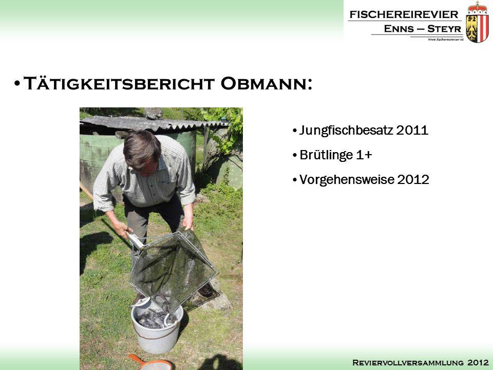 Jungfischbesatz 2011 Brütlinge 1+ Vorgehensweise 2012 Tätigkeitsbericht Obmann: Reviervollversammlung 2012