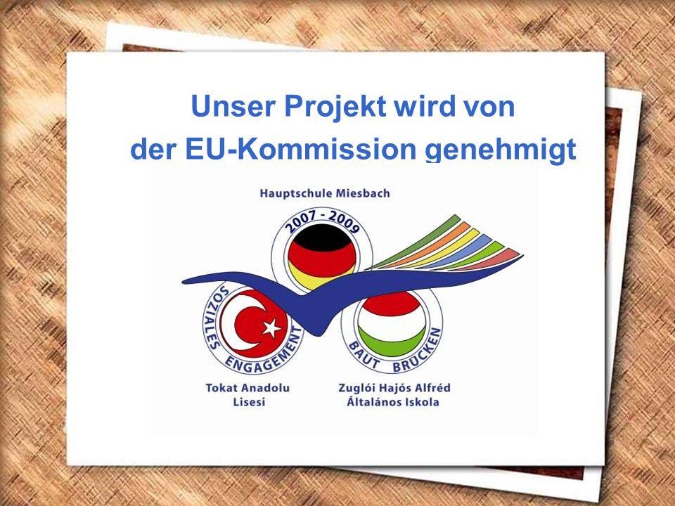 Cumhurbaşkanı Gazi Mustafa Kemal, İzmir Erkek Lisesinde matematik dersini izlerken (1 Şubat 1931) Unser Projekt wird von der EU-Kommission genehmigt