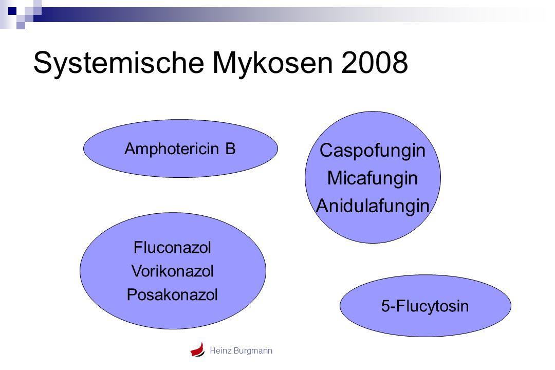 Heinz Burgmann Systemische Mykosen 2008 Amphotericin B Caspofungin Micafungin Anidulafungin Fluconazol Vorikonazol Posakonazol 5-Flucytosin