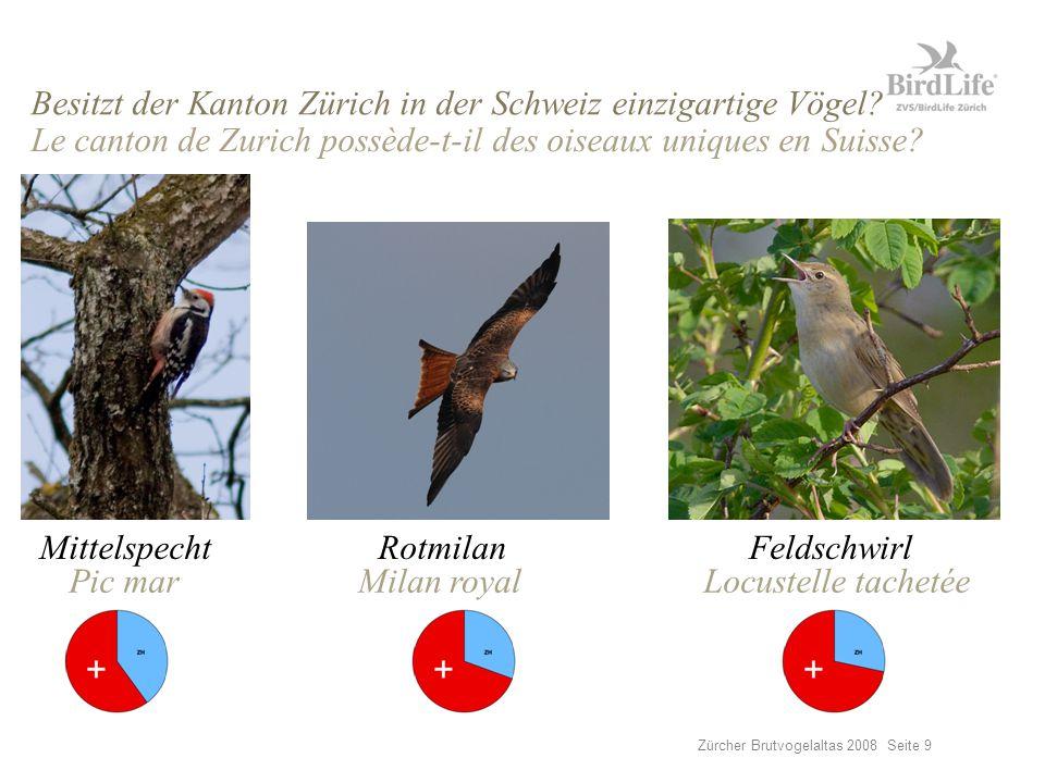 Zürcher Brutvogelaltas 2008 Seite 9 Besitzt der Kanton Zürich in der Schweiz einzigartige Vögel.