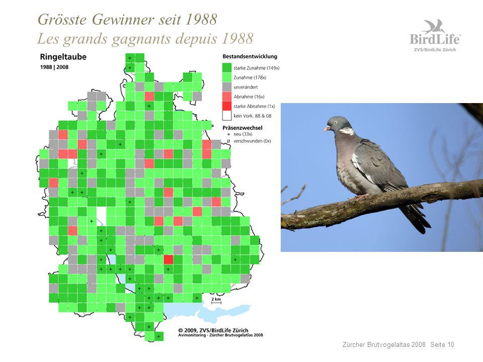 Zürcher Brutvogelaltas 2008 Seite 10 Grösste Gewinner seit 1988 Les grands gagnants depuis 1988