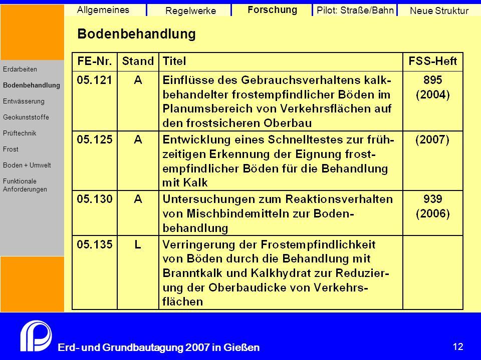 12 Erd- und Grundbautagung 2007 in Gießen 12 Pilot: Straße/Bahn Neue Struktur Allgemeines Regelwerke Forschung Erdarbeiten Bodenbehandlung Entwässerung Geokunststoffe Prüftechnik Frost Boden + Umwelt Funktionale Anforderungen Bodenbehandlung