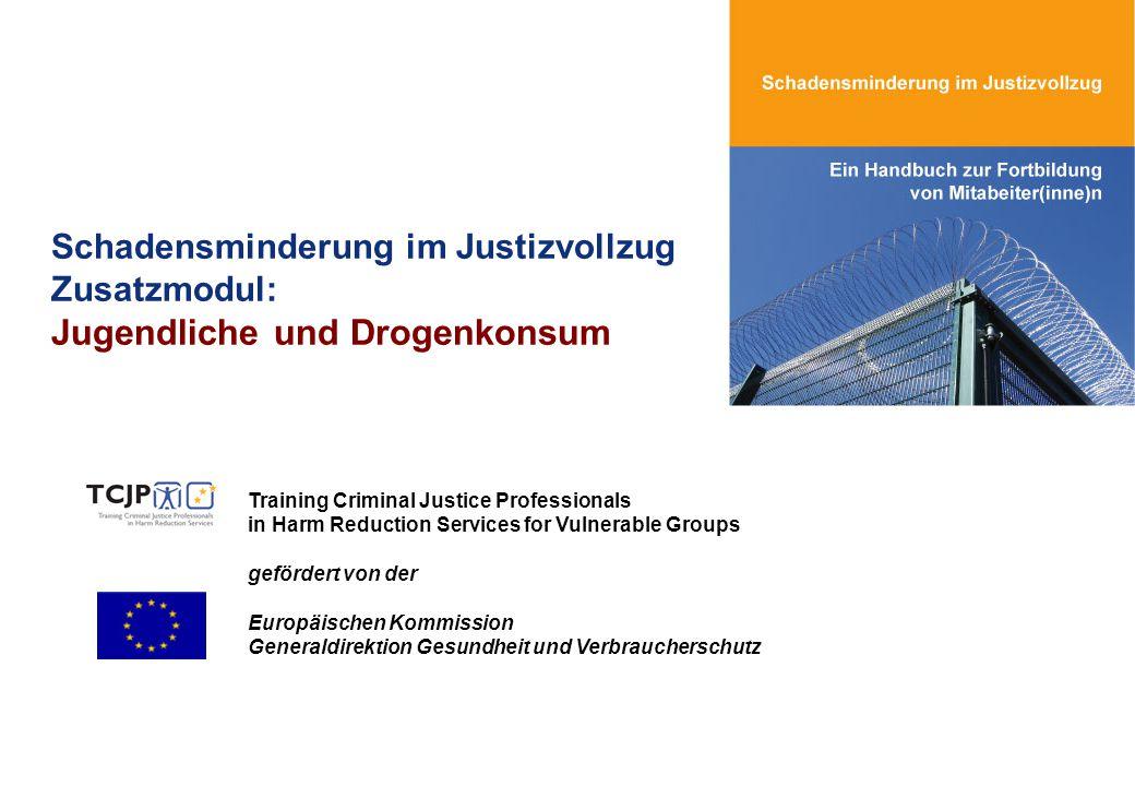 Schadensminderung im Justizvollzug Zusatzmodul: Jugendliche und Drogenkonsum Training Criminal Justice Professionals in Harm Reduction Services for Vu