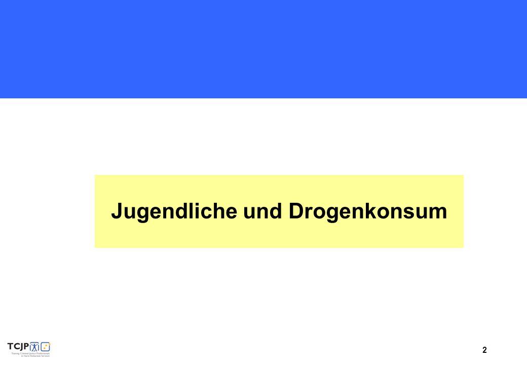 """3 Übung """"Steckbrief eines Jugendlichen"""