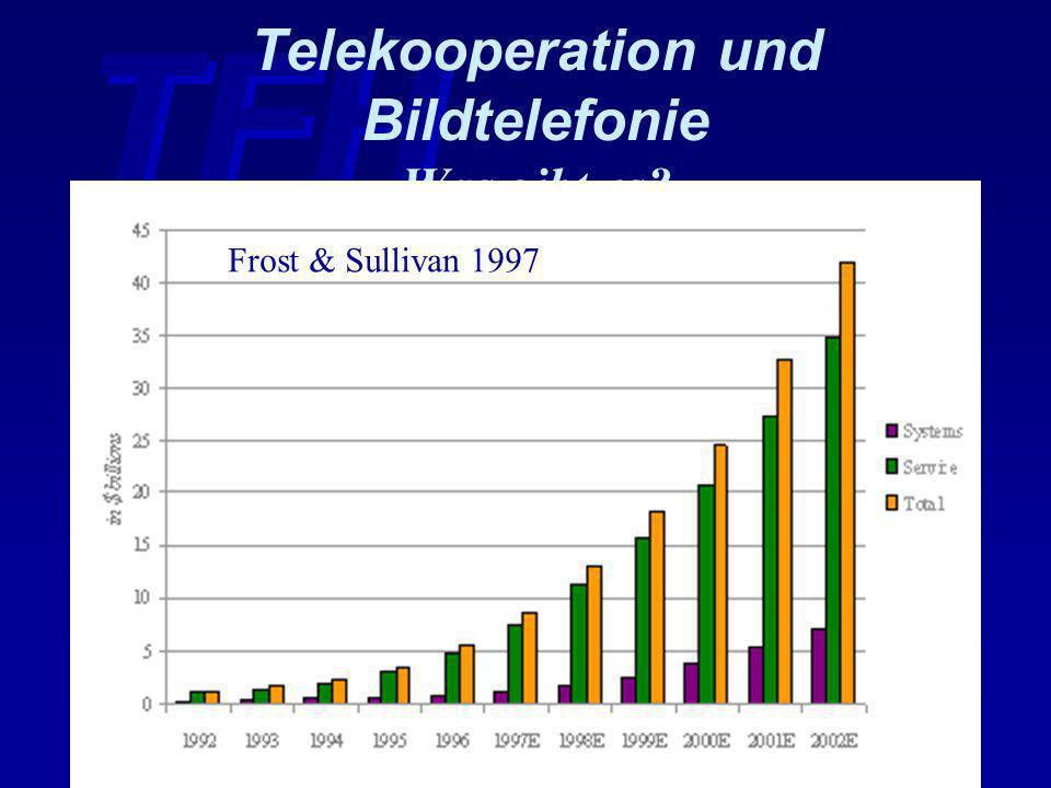 TFH Wildau 10. 9. 98 Prof. Dr. Tolkiehn Seite 27 Telekooperation und Bildtelefonie Was gibt es? Frost & Sullivan 1997