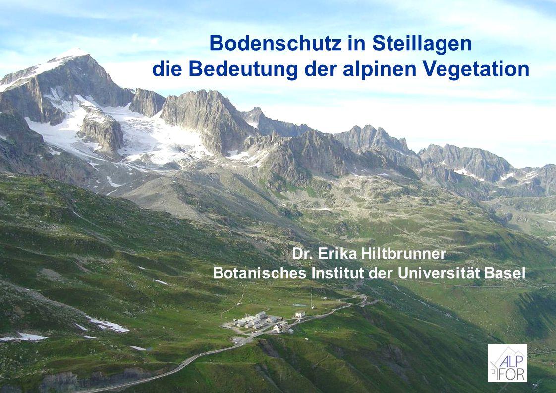 Bodenschutz in Steillagen die Bedeutung der alpinen Vegetation Dr. Erika Hiltbrunner Botanisches Institut der Universität Basel