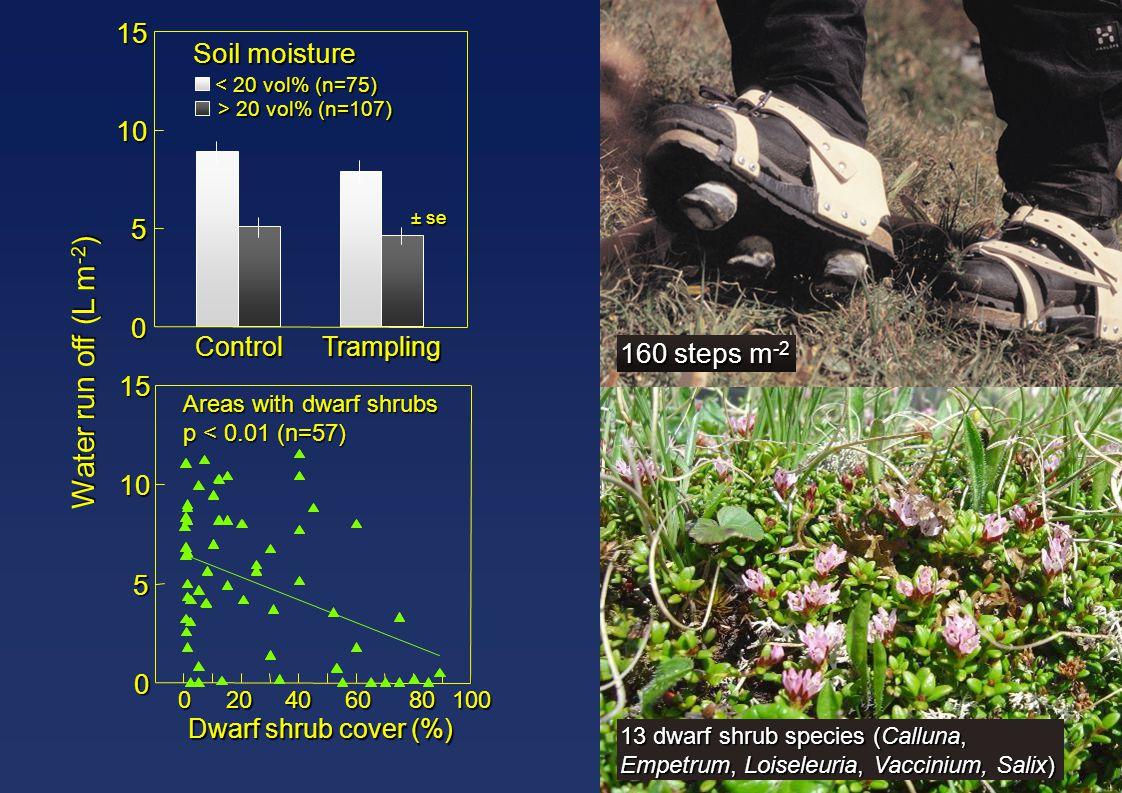 Water run off (L m -2 ) ± se Areas with dwarf shrubs p < 0.01 (n=57) Dwarf shrub cover (%) ControlTrampling 0 5 10 15 < 20 vol% (n=75) Soil moisture 0
