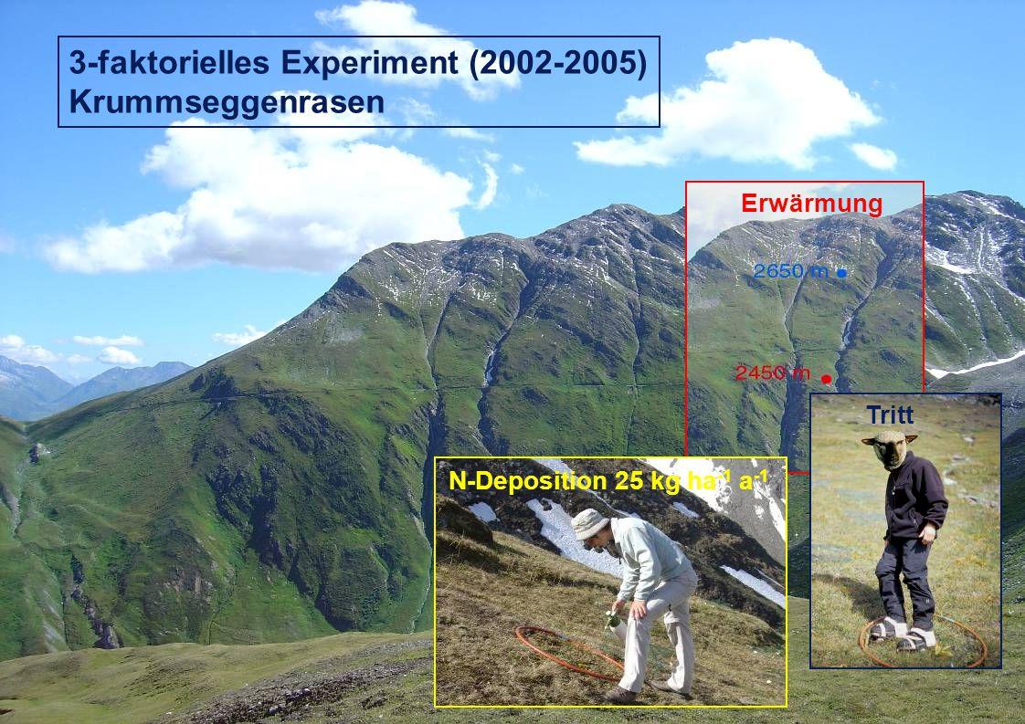 Erwärmung Tritt 3-faktorielles Experiment (2002-2005) Krummseggenrasen N-Deposition 25 kg ha -1 a -1