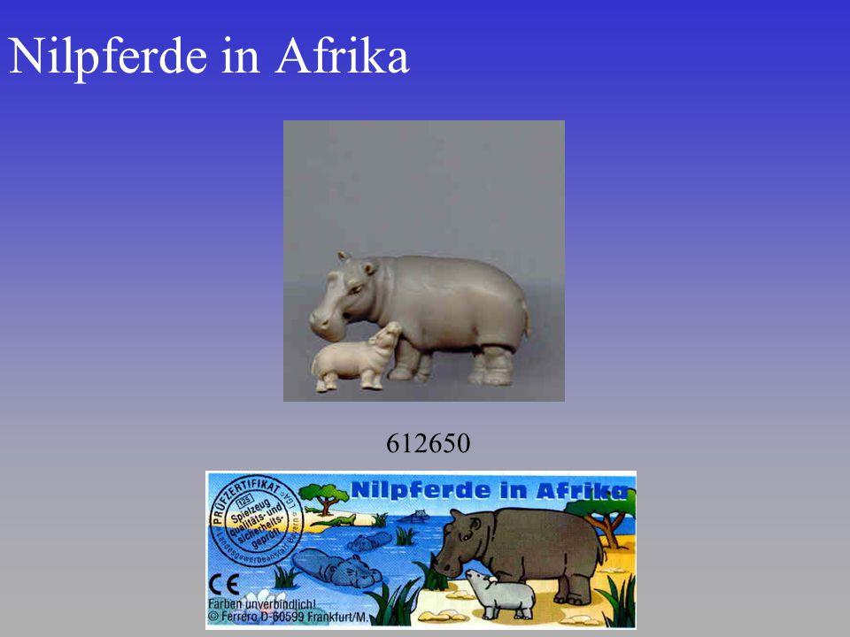 Nilpferde in Afrika 612650