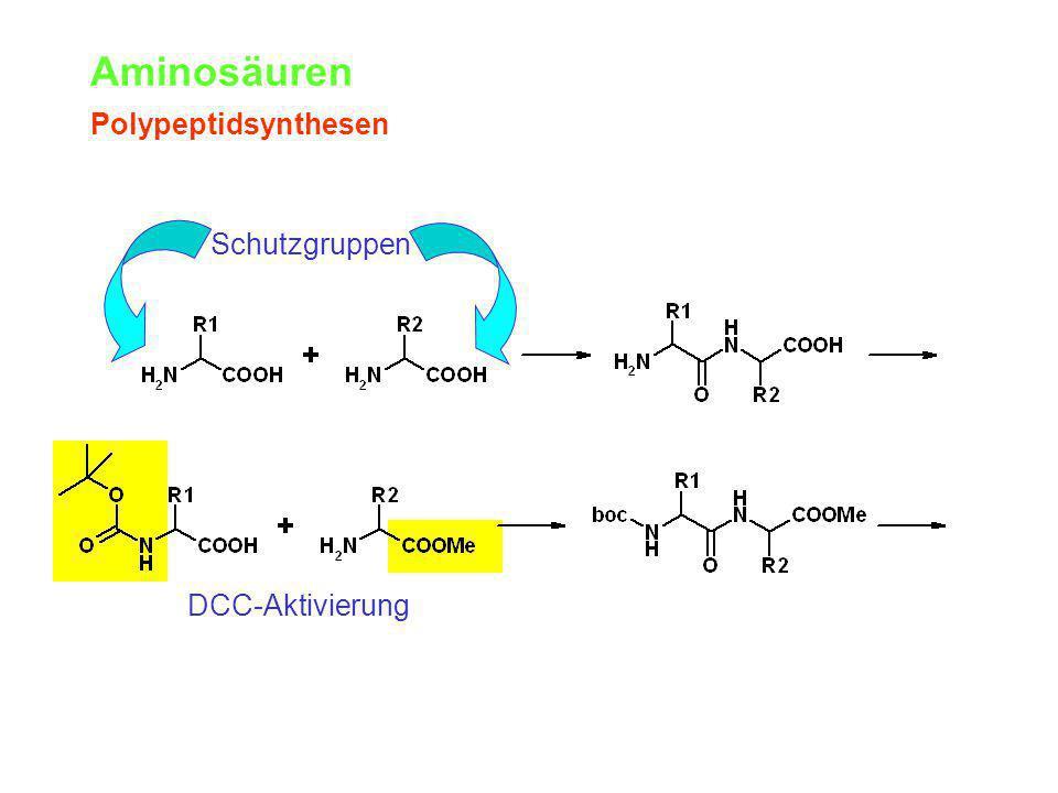 Aminosäuren Polypeptidsynthesen Schutzgruppen DCC-Aktivierung