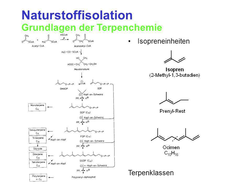 Naturstoffisolation Grundlagen der Terpenchemie Isopreneinheiten Terpenklassen