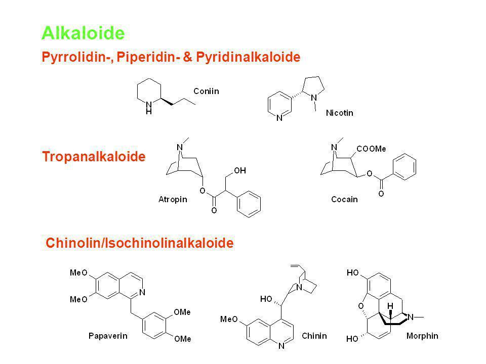 Alkaloide Pyrrolidin-, Piperidin- & Pyridinalkaloide Tropanalkaloide Chinolin/Isochinolinalkaloide