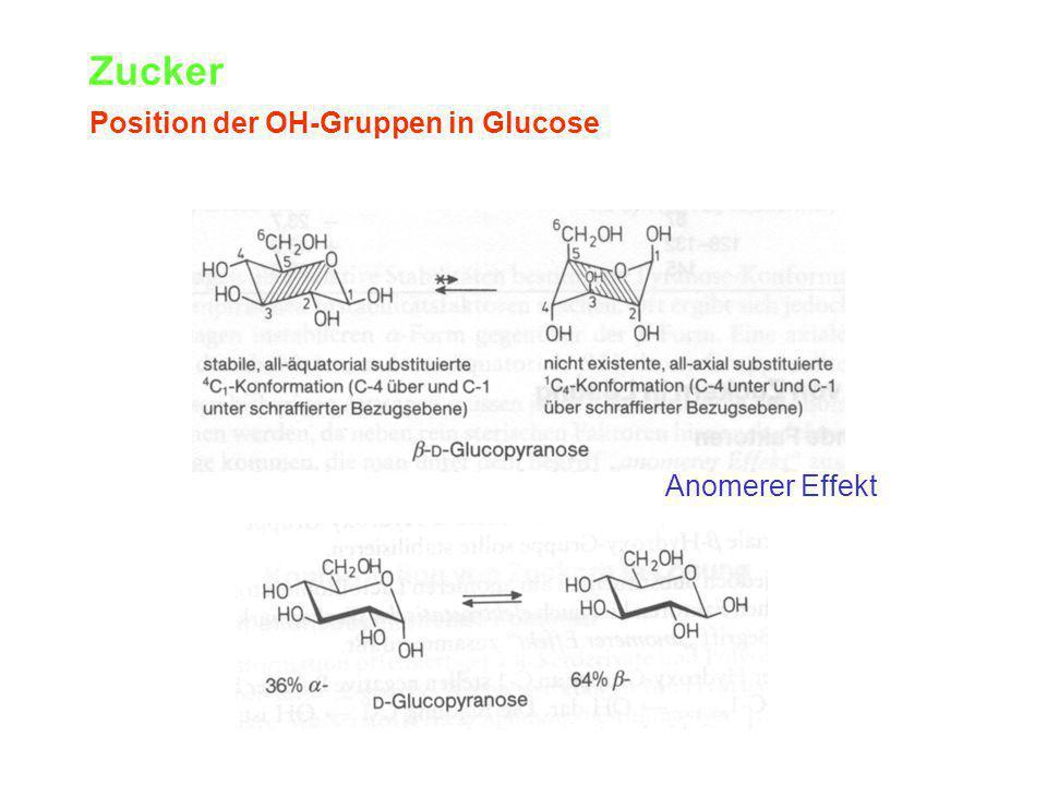 Zucker Position der OH-Gruppen in Glucose Anomerer Effekt