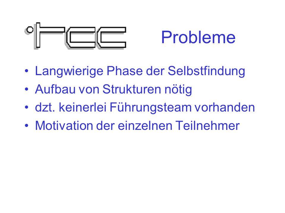 Probleme Langwierige Phase der Selbstfindung Aufbau von Strukturen nötig dzt.