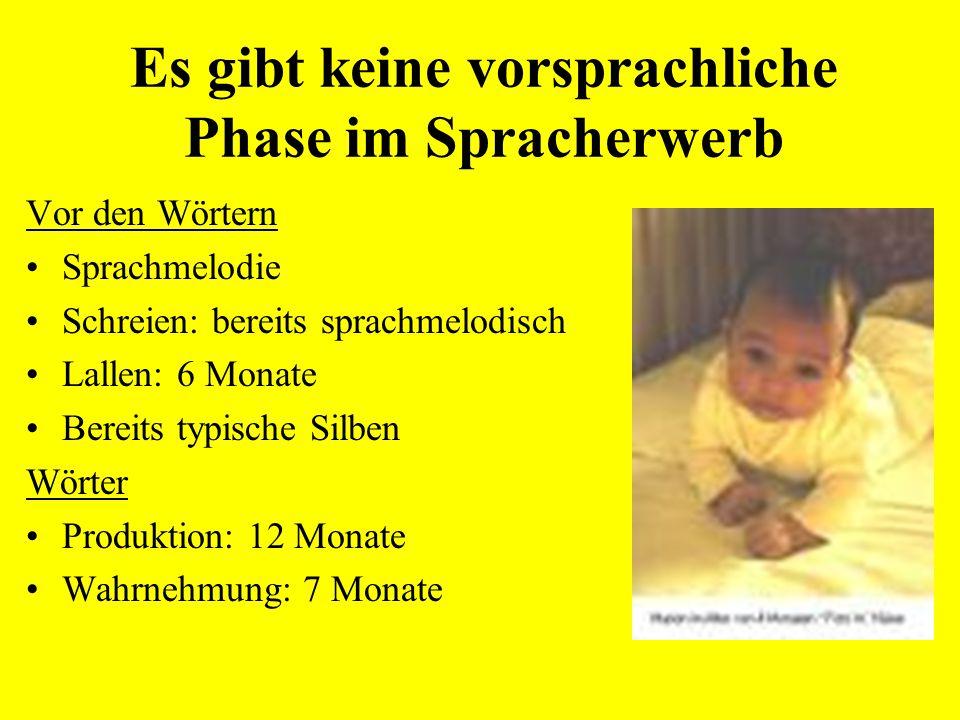 Verstehen ist früher als Sprechen Blickpräferenzmethode Alter: 18 bis 21 Monate Schon 18 Monate alte Kinderreagieren systematisch auf den Unterschied