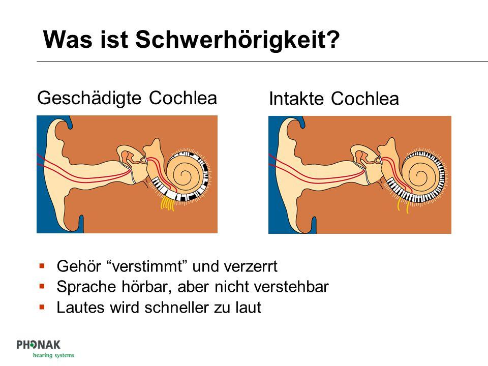 Was ist Schwerhörigkeit? Geschädigtes Gehör schmerzhaft laut Schallpegel dB 10 Frequenz kHz 0.11 unhörbar Hörverlust normal Sprache