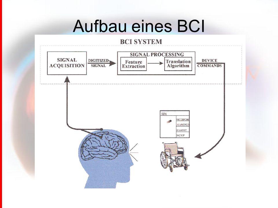 Aufbau eines BCI