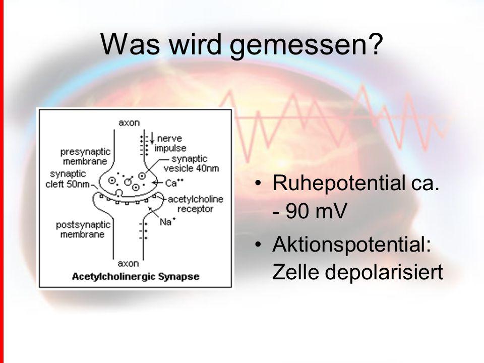 Was wird gemessen? Ruhepotential ca. - 90 mV Aktionspotential: Zelle depolarisiert