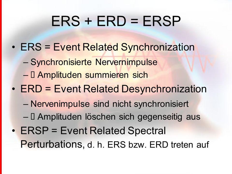 ERS + ERD = ERSP ERS = Event Related Synchronization –Synchronisierte Nervernimpulse –→ Amplituden summieren sich ERD = Event Related Desynchronization –Nervenimpulse sind nicht synchronisiert –→ Amplituden löschen sich gegenseitig aus ERSP = Event Related Spectral Perturbations, d.
