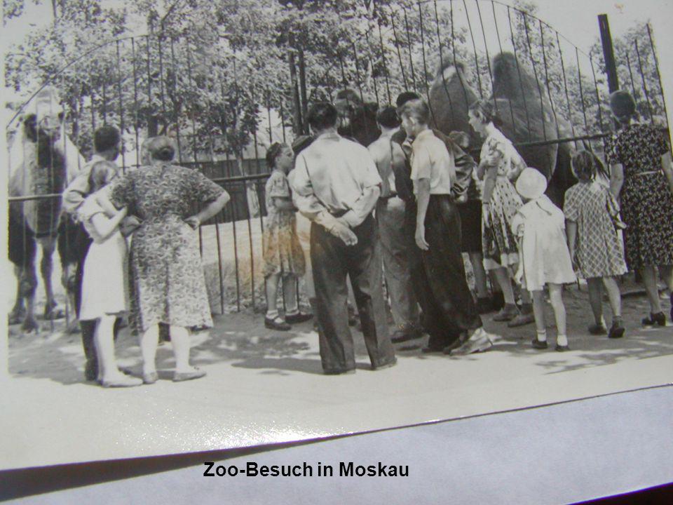 Zoo-Besuch in Moskau