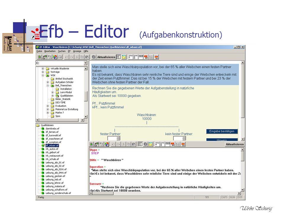 Ulrike Schurig Efb – Editor (Aufgabenkonstruktion)